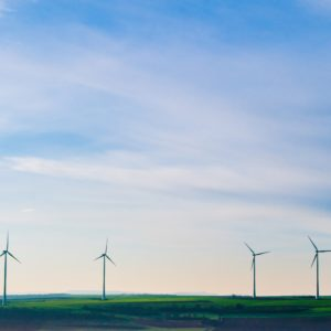 New Poll Shows Voters Want Climate and Clean Energy Solutions