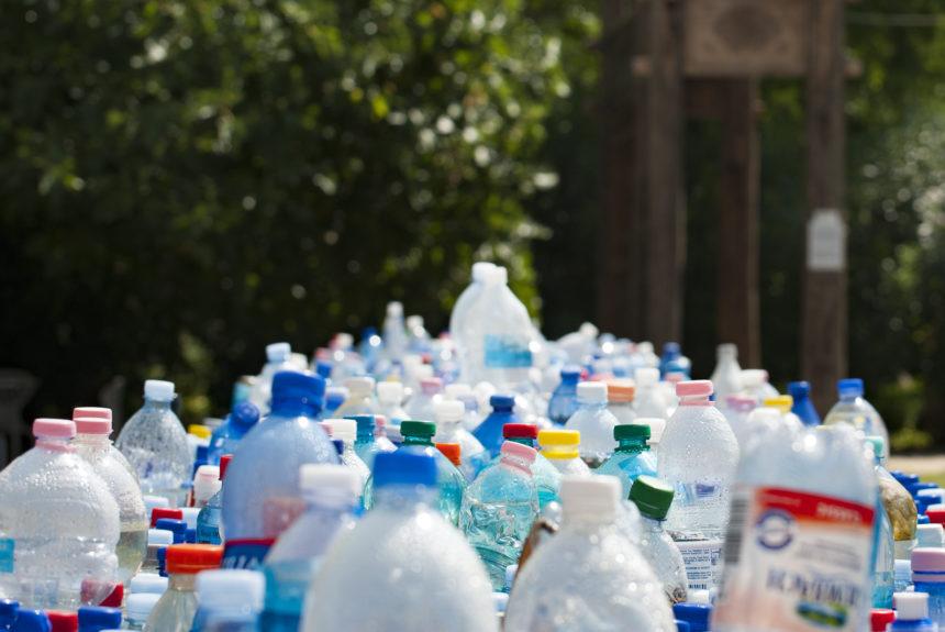 The Race To Develop Plastic-Eating Bacteria