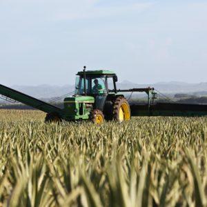Pivot Bio, a startup using microbes to replace synthetic fertilizer, raises $430 mln