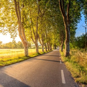 Roads Offer Plastic Eco-Friendly Second Life