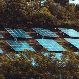 Laurene Powell Jobs' $3.5 billion climate campaign