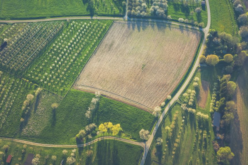 Eliminating Agricultural Subsidies is Good for People and the Planet